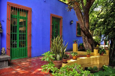 Frida_Kahlo_House,_Mexico_City_(6998147374).jpg