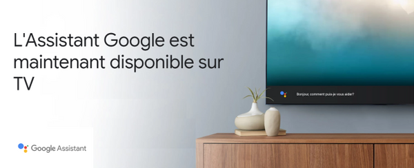Assistant Google - Connect TV RED.png