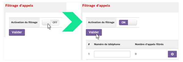 2-activation-du-filtrage-valider-min.png